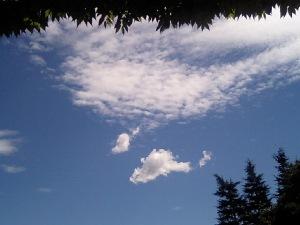2006秋の空