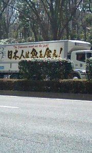 魚トラック100320_1311.jpg